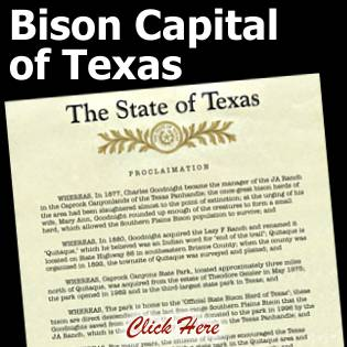 Bison Capital of Texas