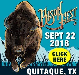 BisonFest 2018