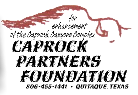 Caprock Partners Foundation Website